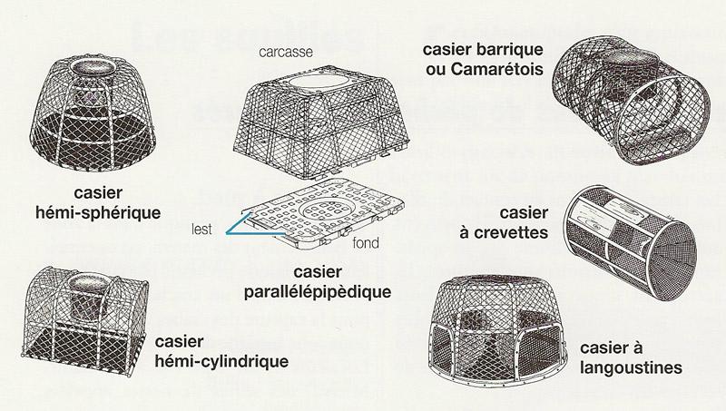 https://www.manchemaree.fr/wp-content/uploads/2020/07/peche_casier.jpg